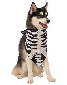Dog Rib Cage : Skeleton, Bones, Halloween, Bandana, Collar