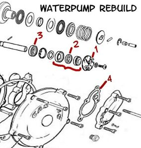 GASG GAS WATER PUMP REBUILD KIT BEARING SEAL GASKET