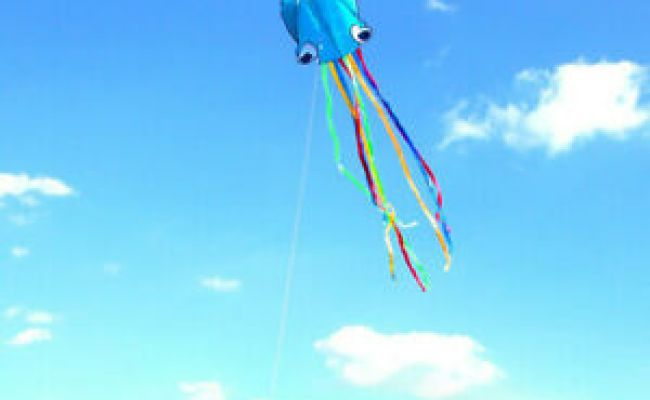 Multi Color Octopus Kite Easy To Fly Great Gift Large