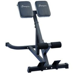 Roman Chair Gym Equipment Wheelchair With Pot New 45 Degree Hyperextension Ab Bench Exercise Fitness Image Is Loading