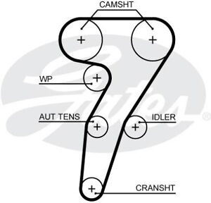 Gates Timing Cam Belt 5653XS Fits Alfa Romeo 147 (2001-10