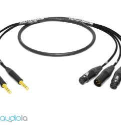 mogami 2931 2 channel insert cable neutrik gold trs to xlr [ 1501 x 1200 Pixel ]