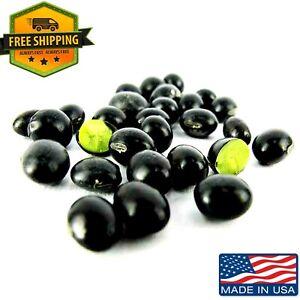 EDAMAME Seed Black Bean Green Inside Pea Black Soybean ...