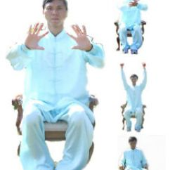 Chair Exercises For Seniors In Wheelchairs Outside Metal Chairs Dr Chen S Wheelchair Dvd Ebay Image Is Loading 039