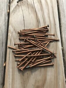 Killing Tree Stumps Copper Nails : killing, stumps, copper, nails, Copper, Nails, Killing, Saplings, Trees, Stumps, Woodworking