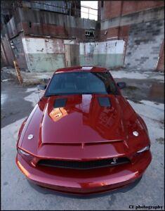 2007 Ford Mustang Hood : mustang, 07-09, Mustang, GT500, TruFiber, Hood!!!, TF10024-A53KR