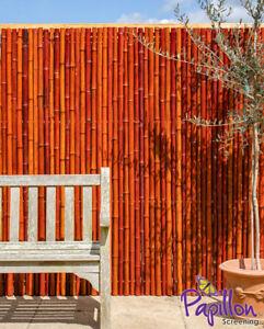 details sur rouleau canisse bambou epais rouge brise vue cloture terrasse patio occultation