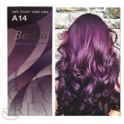 berina . a14 dark brown violet