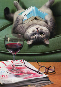 Upside Down Cat Reading Book Funny Mothers Day Card By