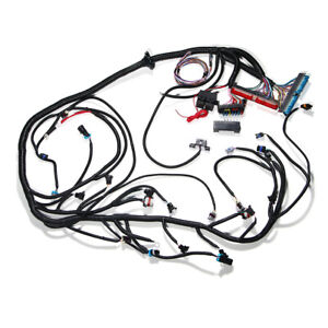 Standalone Wiring Harness For 1997-2006 DBC LS1 W/T56 or