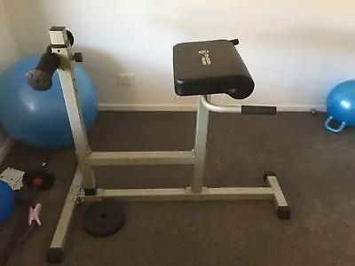 gym quality roman chair brown jordan lounge high sturdy fitness equipment