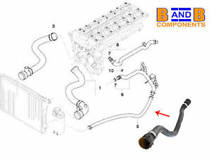 BMW E46 LOWER RETURN RADIATOR COOLANT WATER HOSE 320I