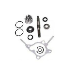 Water Pump Repair Kit for Honda Reflex and Honda Big