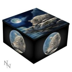 pagan mirror wiccan reflection trinket witch wolf box