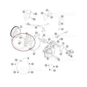 BRAND NEW GENUINE KTM STATOR 144 SX 250 XC XC-W 300