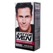 men shampoo-in hair color