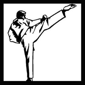 Basic Kyokushin Style Karate Training Martial Arts