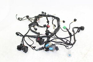 05-06 Kawasaki Z750s Main Wiring Harness Wire Loom 26031