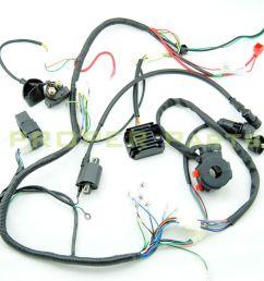 complete electrics atv quad 200cc 250cc cdi coil wiring harness lifan 125 wiring harness lifan wiring harness [ 1024 x 1024 Pixel ]