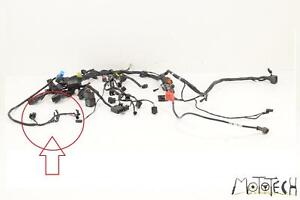 2012 Triumph 1050 Speed Triple NON-ABS Wiring Harness Loom