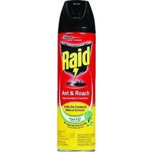 Raid Ant Roach Killer Insecticide SprayLemon 175 oz
