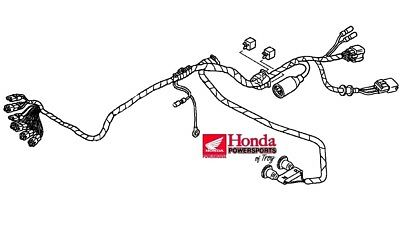 NEW GENUINE OEM 13 14 HONDA TRX400X TRX 400 X MAIN WIRE