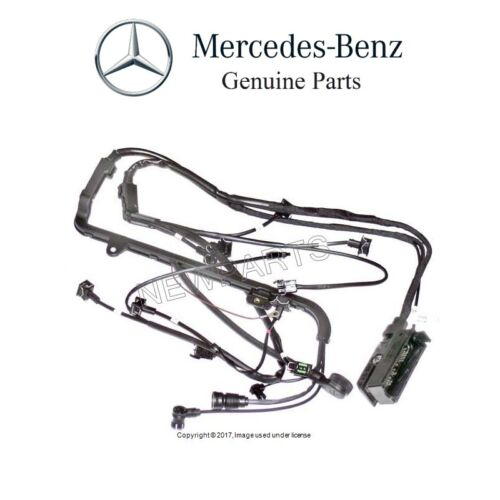 Mercedes Clk 500 Main Wiring Wire Harness Loom A2095406807