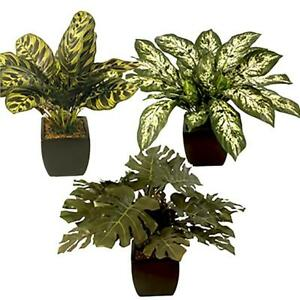 Artificial Potted Plants Monstera Pothos Zebra Leaf Greenery Choose Type Ebay