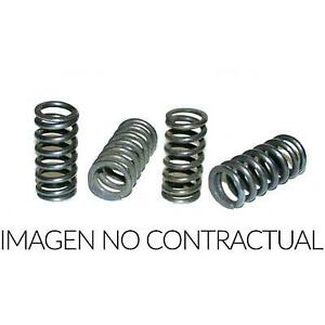 Equipment, Clutch Spring Compatible with Triumph Daytona