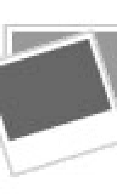 Parrot Pirate Invitations Party Invite