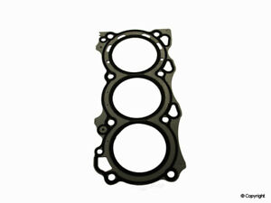 Engine Cylinder Head Gasket-Stone Right WD Express 216