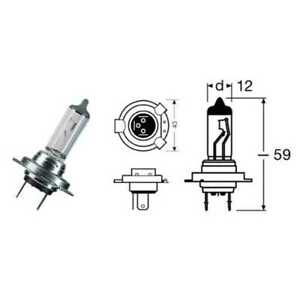 404203020#156 Lamp H7 Night Racer 110 55W / Px26D Triumph