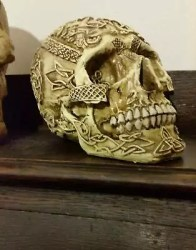 NEW! money box skull gothic medieval home decor spooky cool halloween Collectables Gumtree Australia Sutherland Area Menai 1222910932