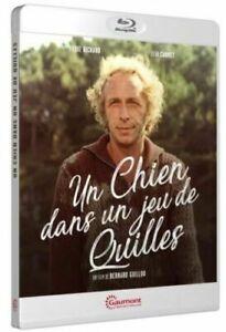 Chien Dans Un Jeu De Quille : chien, quille, Chien, Quilles, Pierre, Richard, REGION, 3607483230176