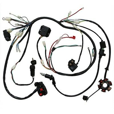 Electrics Wiring Harness Wire Loom Stator Solenoid GY6