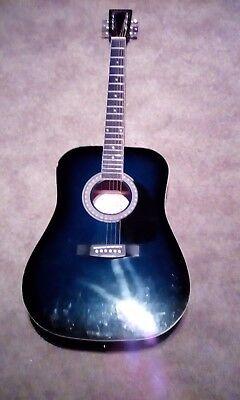 Esteban Guitar : esteban, guitar, Starlite, Limited, Edition, Esteban, Acoustic, Guitar, Amplifier