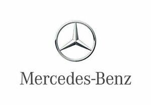 Cloud Download Mercedes Benz W164/164 Workshop Service