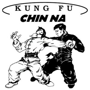 CHIN NA KUNG FU BLACK BELT HOME STUDY CERTIFICATION COURSE