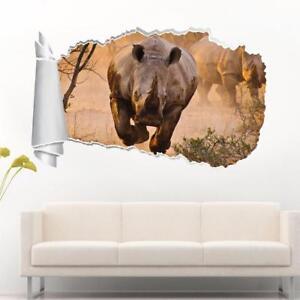 rhinoceros rhino 3d torn