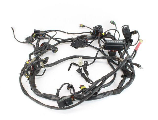 2005 Ducati Monster S2R 800 Main Engine Wiring Harness