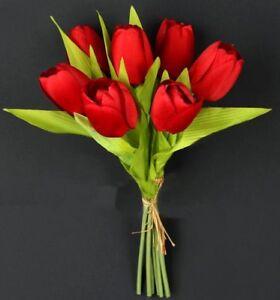 Tulpenbund  Tulpenstrau mit 7 Tulpen rot Blumenstrau