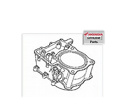 Honda TRX680 TRX 680 Rincon 2006-2016 Engine Cylinder NEW