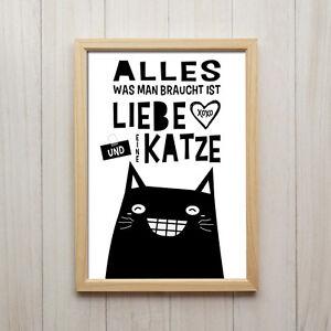 Details Zu Alles Was Man Braucht Kunstdruck A4 Liebe Katze Spruch Deko Bild Poster Geschenk