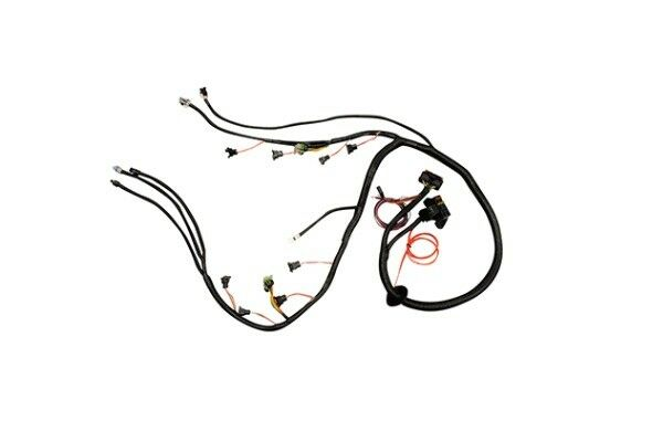 1997-2006 DBC LS1 STANDALONE WIRING HARNESS T56 or Non
