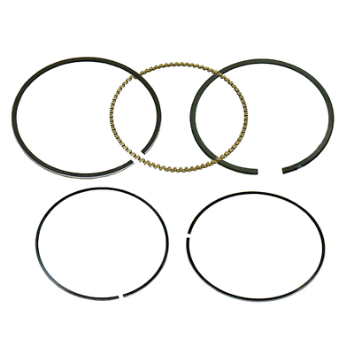 Fits 2009 Polaris Sportsman 850 Efi Xp W/ Eps Piston Ring