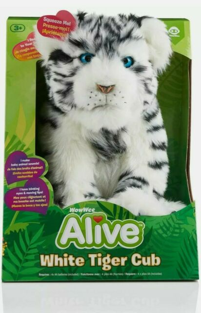 White Tiger For Sale : white, tiger, WowWee, Alive, White, Tiger, Online