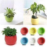 Hot sale Small Mini Plastic Plant Flower Pot Home Office ...
