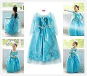 elsa fancy dress frozen costume
