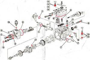 Total Overhaul Fuel Pump Kit SHOGUN PAJERO DELICA 2.8 & 2