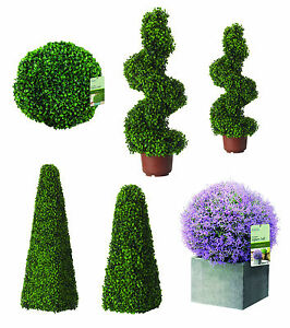 artificial topiary trees buxus
